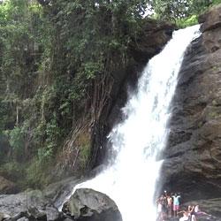 Soochipara Waterfalls in Wayanad