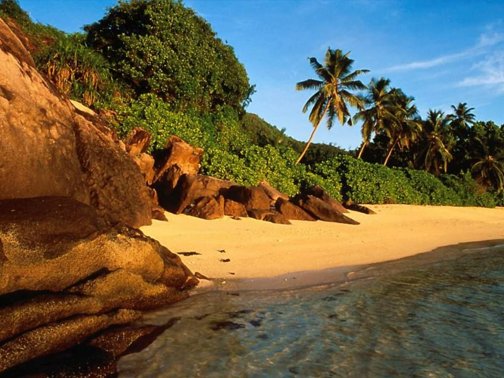 South Coast Beaches