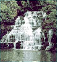 Spread Eagle Falls in Shillong