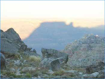 Tafelberg in Western Cape
