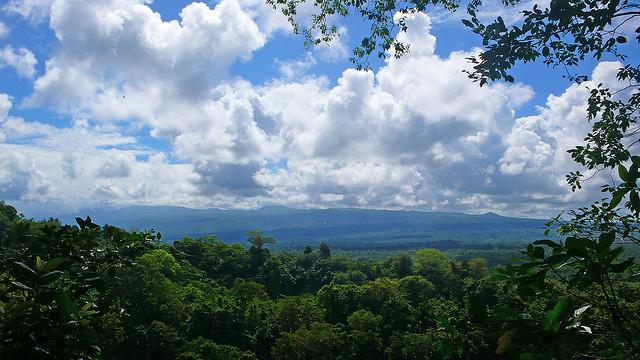 Tafua Peninsula Rainforest Preserve in Savaii Island