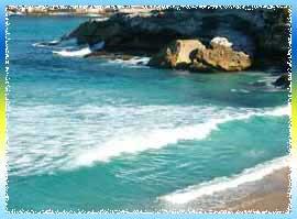 Tamarama Beach in Sydney