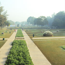 Terraced Flower Garden in Chandigarh City