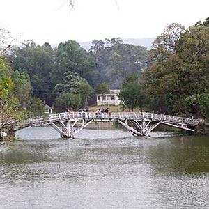 The Ward Lake