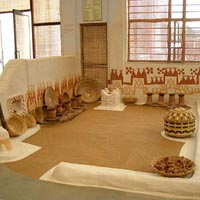 Tribal Habitat (Museum of Man): in Bhopal