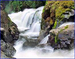 Tumwater Falls in Olympia