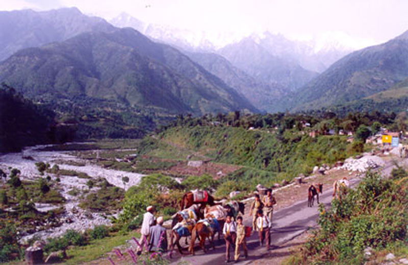Palampur India  city pictures gallery : Book Delhi Chandigarh Dharamshala Palampur Tour 5 Days / 4 ...