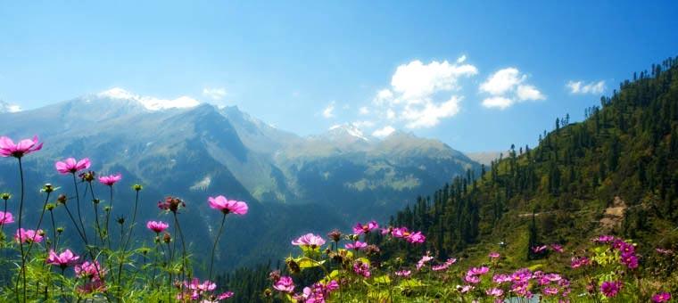 Thimphu Punakha Paro Package 27637 Travel Package To