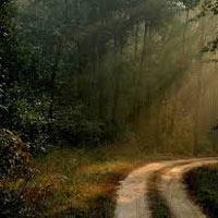 Bandhavgarh - Kanha National Park - Dhuandhar Falls - Bhedaghat