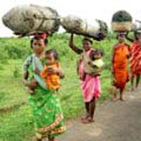 Bhubaneswar - Konark - Puri - Gopalpur-on-sea - Rayagada - Bissamkatak - Chatikona - Jeypore - Onkudelli - Litiput - Kunduli - Machkund - Lamtaput - Jagdalpur - Kanger valley - Chitrakote - Narayanpur - Raipur