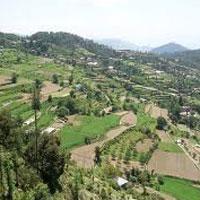 New Delhi - Chail - Sanglu - Tabo - Kalpa - Shoja - Manali