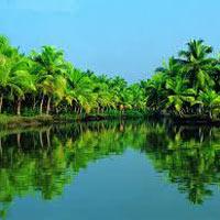 Kochi - Munnar - Periyar - Kumarkom - Alleppey - Kovalam