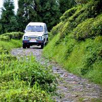 Darjeeling - Pelling - Gangtok - Kalimpong