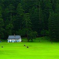 Shimla - Manali - Dharamsala - Dalhousie - Amritsar