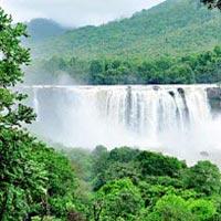 Cochin - Guruvayur - Athirappilly - Munnar - Thekkady - Kumarakom - Cochin