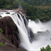 Cochin - Athirappilly - Nadukani - Thekkady - Kumarakom