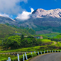 Wayanad - Calicut - Cochin - Munnar - Thekkady - Alleppey