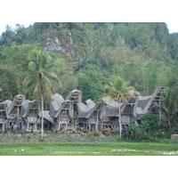 Makassar - Bugis - Toraja