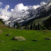 Delhi - Jammu - Srinagar - Sonamarg - Kargil - Leh -  Pangong Tso - Alchi - Likir - Lamayuru