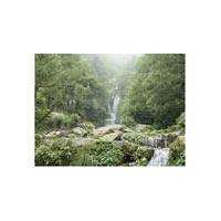 Pathankot - Dalhousie - Dharamsala - Kangra