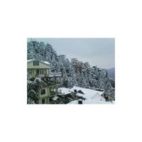 Chandigarh - Shimla - Manali - Kullu