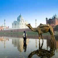 Mathura - Agra - Mussoorie - Haridwar