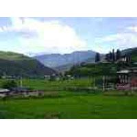 Phuntsholing - Thimphu - Paro - Alipurduar