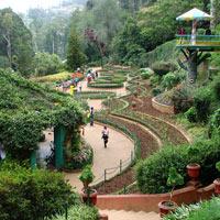 Bangalore - Ooty - Coimbatore