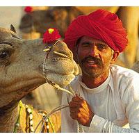 Jaipur - Bikaner - Jodhpur