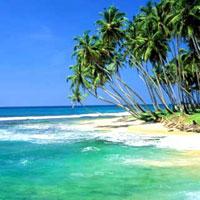 Sri Lanka - Colombo - Kitulgala - Nuwara Eliya - Kandy