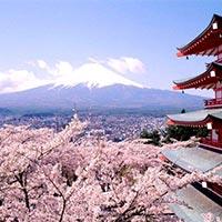 Tokyo - Mt.Fuji - Hakone - Nagoya - Ise - Tobe