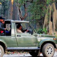 Dudhwa Tiger Reserve & National Park