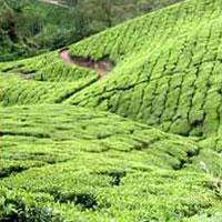 Ahobilam - Nandyal - Mahanadhi - Sri Sailam - Mantralayam - Hampi - Hospet - Goa - Bangalore