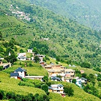 Dharmshala - Dalhousie