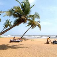 Negombo - Anuradhapura - Trincomalee - Nilaveli - Polonnaruwa - Sigiriya - Dambulla - Kandy - Nuwara Eliya - Ella - Tissamaharama - Galle - Hikkaduwa