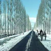 Vaishno Devi - Srinagar - Mughal Garden - Shankaracharya Temple - Dal Lake - Char Chinar - Pahalgam - Gulmarg - Sonmarg