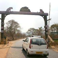 Bangalore - Bandipur National Park - Ooty - Kodaikanal - Bangalore