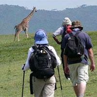 Kenya - Nairobi