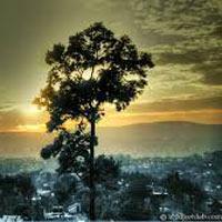 Guwahati - Kaziranga - Shillong - Cherrapunji