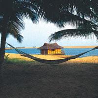 Cochin - Munnar - Thekkady - Kottayam - Alleppey - Kovalam Beach - Trivandrum - Kanyakumari