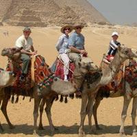 Cairo - Alexandria - Luxor - Aswan - Edfu - Kom Ombo