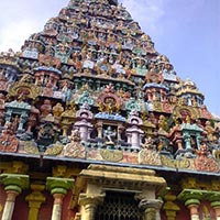 Kannur - Calicut - Guruvayur - Trishur - Ernakulam - Munnar - Thekkady - Alleppey - Trivandrum.
