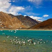 Leh Ladakh - Pangong Lake - Nubra Valley - Kargil