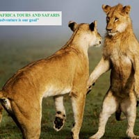 Nairobi - Narok - Great Rift valley - Masai Mara - Nakuru