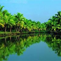 Kochi - Munnar - Thekkady - Alleppey - Kumarakom - Kovalam