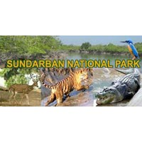 Kolkata - Sundarban - Shantiniketan - Murshidabad - Malda - Siliguri - Kurseong - Darjeeling - Kalimpong - Jaldapara