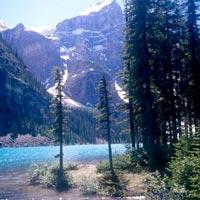 Toronto - Niagara - Ottawa - Montreal - Banff - Jasper - Calgary - Victoria - Vancouver - Whistler