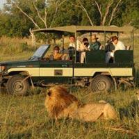Nairobi - Masai Mara - Lake Naivasha - Aberdares Natinal Park