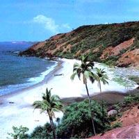 Delhi - Goa - Mumbai - Cochin - Munnar - Periyar - Kottayam - Alleppey - Kovalam - Trivandrum