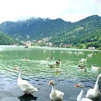 Delhi - Nainital - Mussoorie - Haridwar - Rishikesh